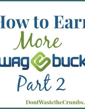 How to Earn More Swagbucks, Part 2
