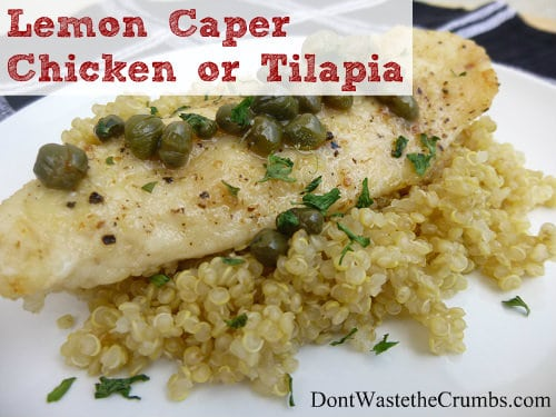 Get your cooking on with this delicious lemon caper chicken (or tilapia) recipe! The lemon tenderizes the meat and give the dish a flavorful tang. Ready in minutes and a hit with your family! :: DontWastetheCrumbs.com