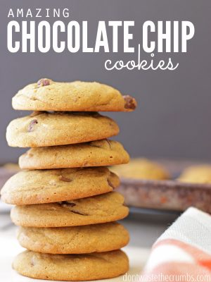 The Best Chocolate Chip Cookie Ever