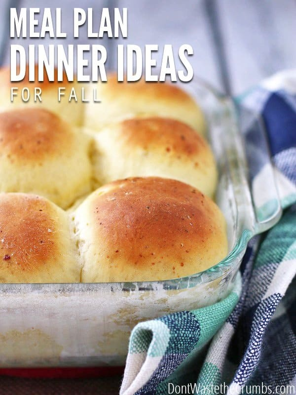 Fall Dinner Ideas for October. Use this one month meal plan to feed your family healthy food on a budget! Feeds a family of four for about $350! :: DontWastetheCrumbs.com