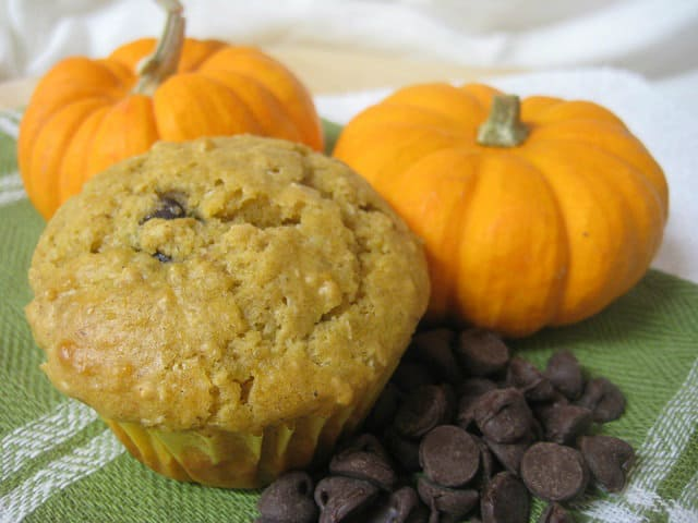 Pumpkin Chocolate Chip Muffin