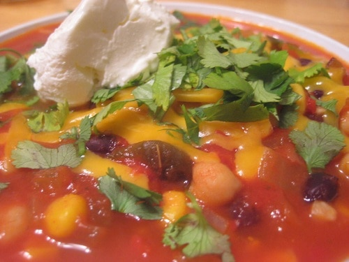 Tortilla Soup from Don't Waste the Crumbs