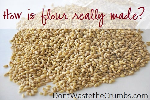 How is Flour Made