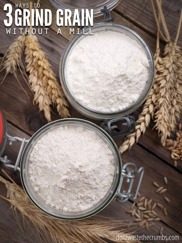 Have you ever wondered how to make flour without a grain mill? I tested out three different methods to see what works best! :: DontWastetheCrumbs.com