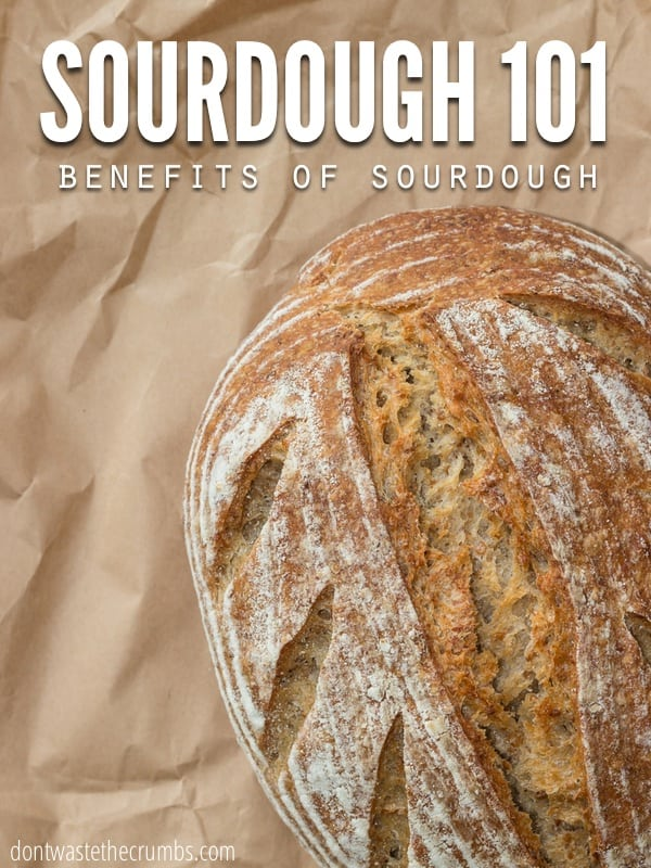 What is Sourdough? Find out here the awesome benefits of sourdough bread. Plus the reasons on why you should start making sourdough bread today! :: dontwastethecrumbs.com