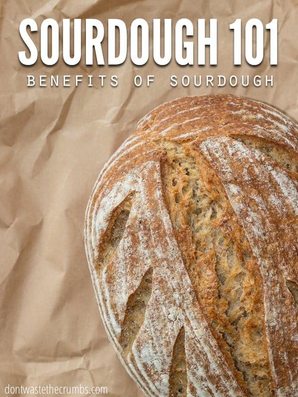 What Is Sourdough The Benefits Of Sourdough Bread