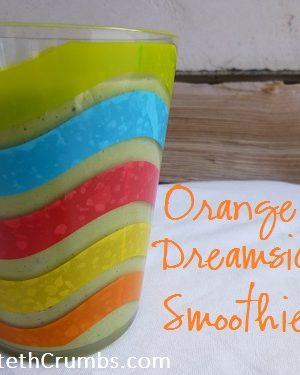 {Yummy} Recipe:  Orange Dreamsicle Smoothie {Guest Post}