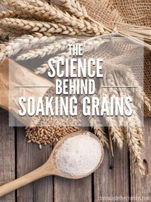 The Science Behind Soaking Grains
