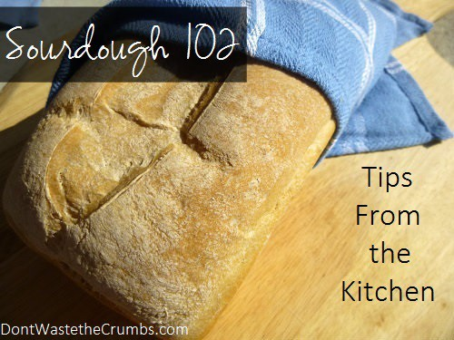 Sourdough 102: Tips from Experimenting in the Kitchen