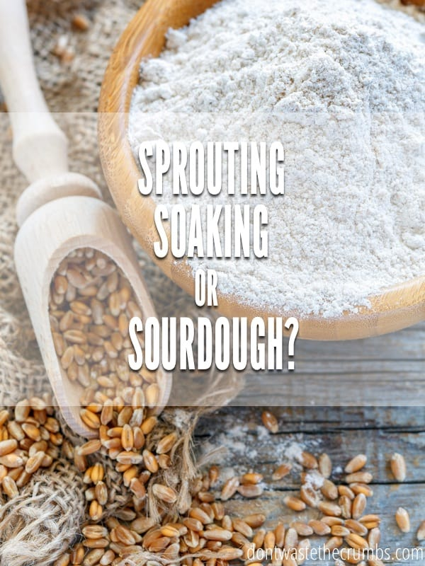 Sourdough vs Soaking vs Sprouting. Which method is the most practical? All the pros and cons are line up and we've reached a decision! :: DontWasteTheCrumbs.com