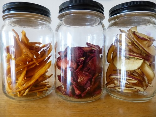 Easy tutorial for how to dehydrate fruit, including apples, strawberries, peaches, mango, grapes, persimmon, pineapple and blueberries. Making your own dehydrated fruit is a great way to save money too! :: DontWastetheCrumbs.com