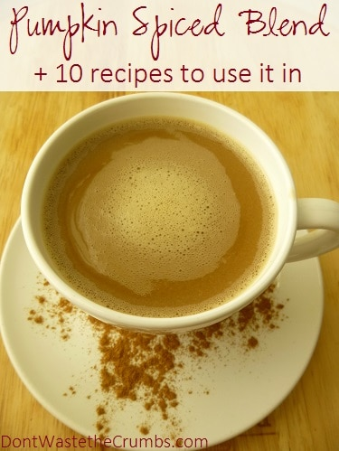This easy homemade blend essentially takes any beverage you want - coffee, tea, milk - and instantly makes it pumpkin-spiced - in under 10 seconds! :: DontWastetheCrumbs.com