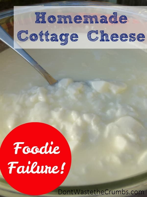 Ever follow the direction and get NOTHING like the picture? Here's my story of making supposedly the easiest homemade cheese ever... and not getting cheese! :: DontWastetheCrumbs.com