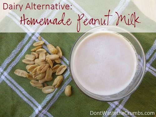 ... milk alternatives. Make peanut milk at home, in just minutes