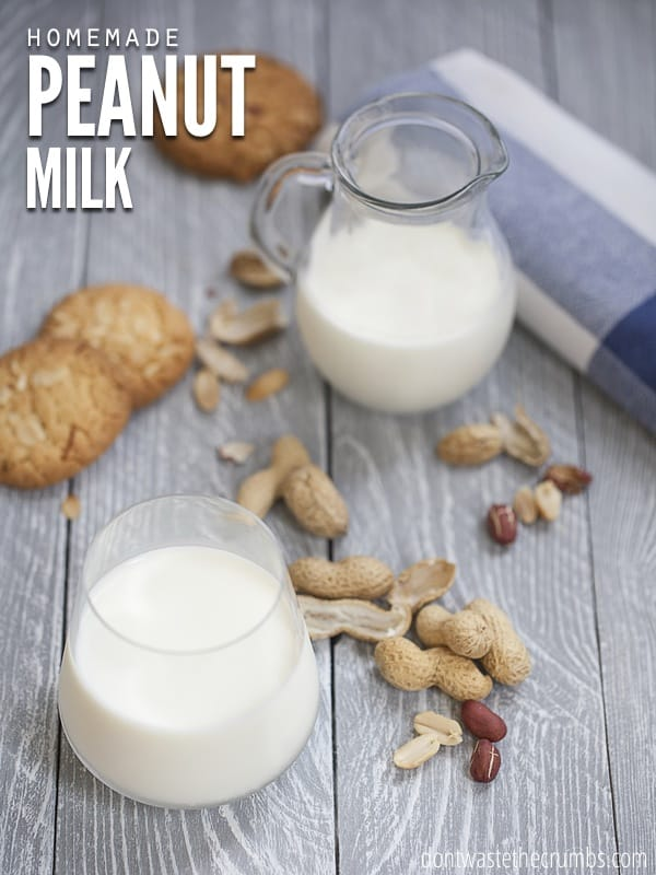 Dairy Alternative: Homemade Peanut Milk...no nut is immune to our experimentation of non-dairy milk alternatives. Make peanut milk at home, in just minutes! :: DontWastetheCrumbs.com
