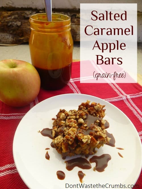 Try out these delicious homemade salted caramel apple bars! They taste just like fall is supposed to: warm, sweet and comfort down to your toes. :: DontWastetheCrumbs.com