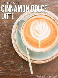 Try this quick and easy Cinnamon Dolce Latte recipe. Tastes just like Starbucks, without the expense or unhealthy ingredients. Perfect for the holidays or any time of the year. :: DontWastetheCrumbs.com