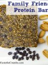 Family Friendly Protein Bars
