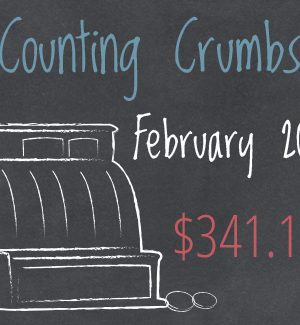 Counting Crumbs February 2014:  $341.14