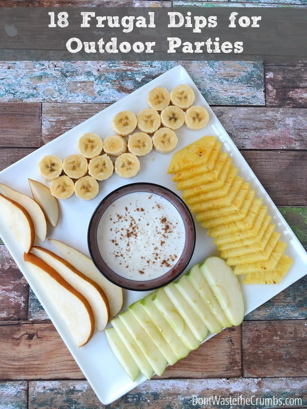 18 Frugal Dips for Outdoor Parties - when you're trying to bring something healthy, frugal and using only ingredients in the pantry, start with this list. :: DontWastetheCrumbs.com