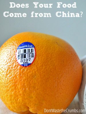The Dollar Store Dilemma:  Does your food come from China?