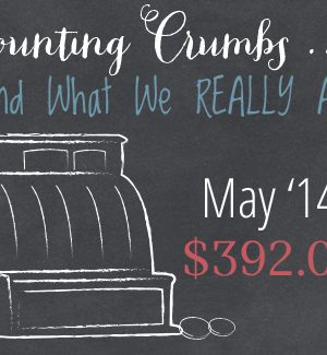 Counting Crumbs: Grocery Budget Accountability May 2014