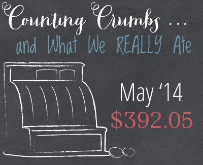 One family strives to feed their family real food on just $330 each month. Come see where they shopped and how they spent their grocery budget money! :: DontWastetheCrumbs.com