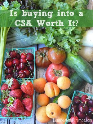 Is a CSA worth it?