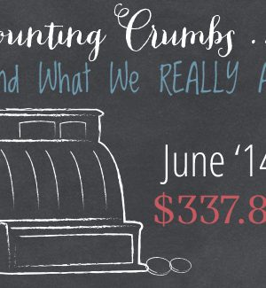 Counting Crumbs:  Grocery Budget Accountability June 2014