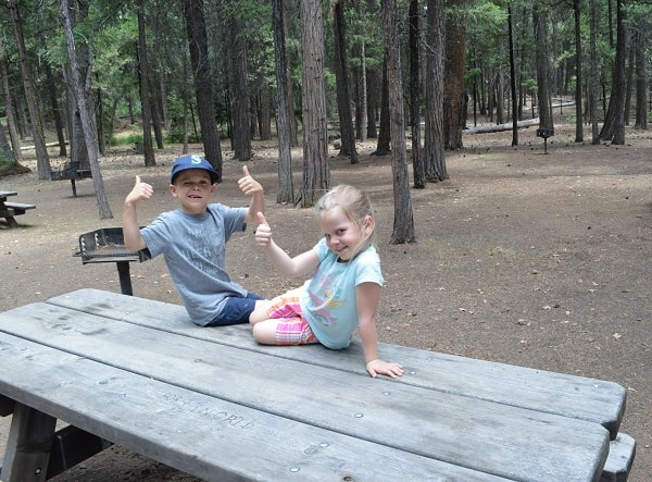 Kids on Picnic Table