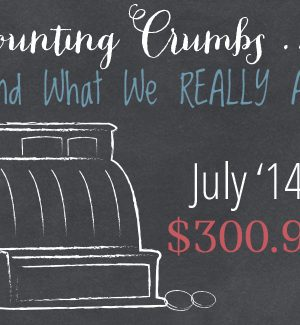 Counting Crumbs: Grocery Budget Accountability July 2014