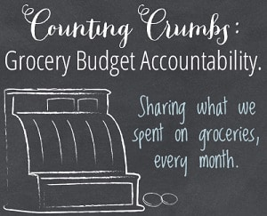 Monthly Grocery Budget Accountability Meetings
