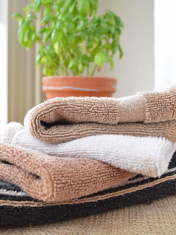 Freshly folded hand towels (two brown, and one white) beside a green plant in a terracotta plant.