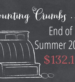 Counting Crumbs: Grocery Budget Accountability End of Summer 2014