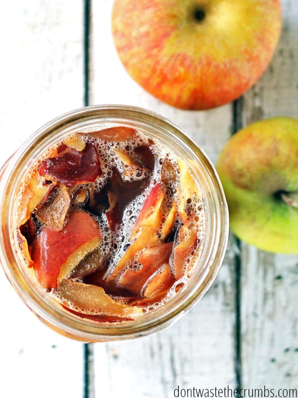 Have an abundance of apples? Don't throw away those peels! Turn your food scraps into homemade apple cider vinegar. It's basically free food!