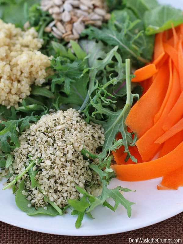 This salad is perfect for the winter months! Kale, carrots and seeds you already have in your pantry? It's packed with flavor, crunch, 26g of protein and super affordable at less than $3! :: DontwastetheCrumbs.com