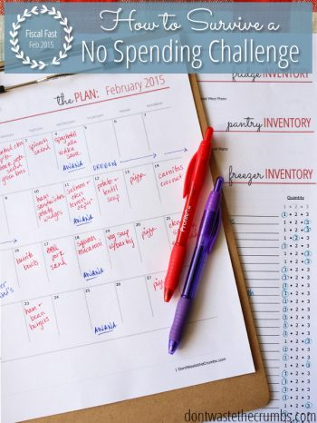 """Calendar and other planners with two pens sitting on top. Text overlay says, """"Fiscal Fast 2015: How to Survive a No Spending Challenge""""."""