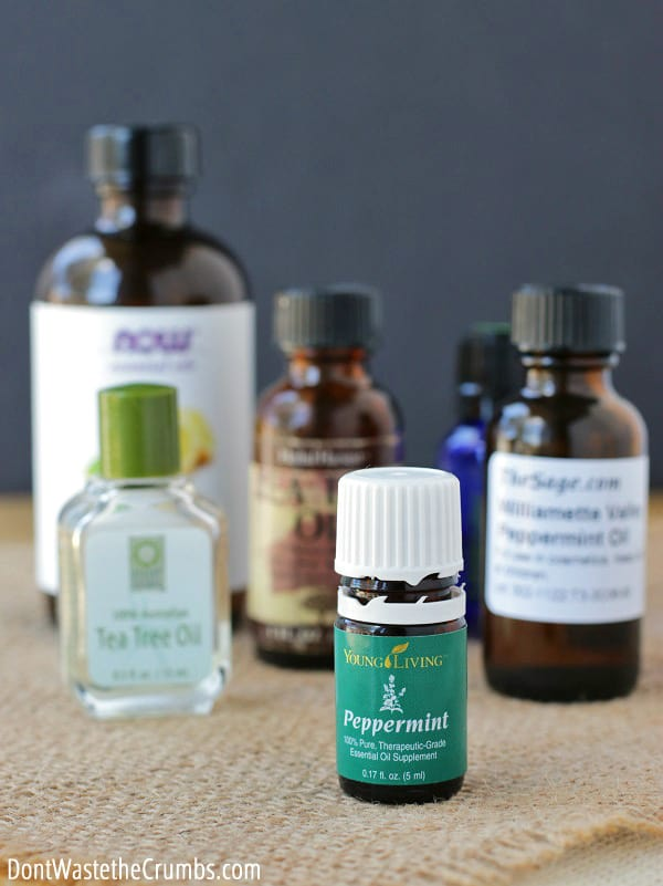 Where do you get your essential oils? We decided to quit buying them from Amazon and found a better company instead.