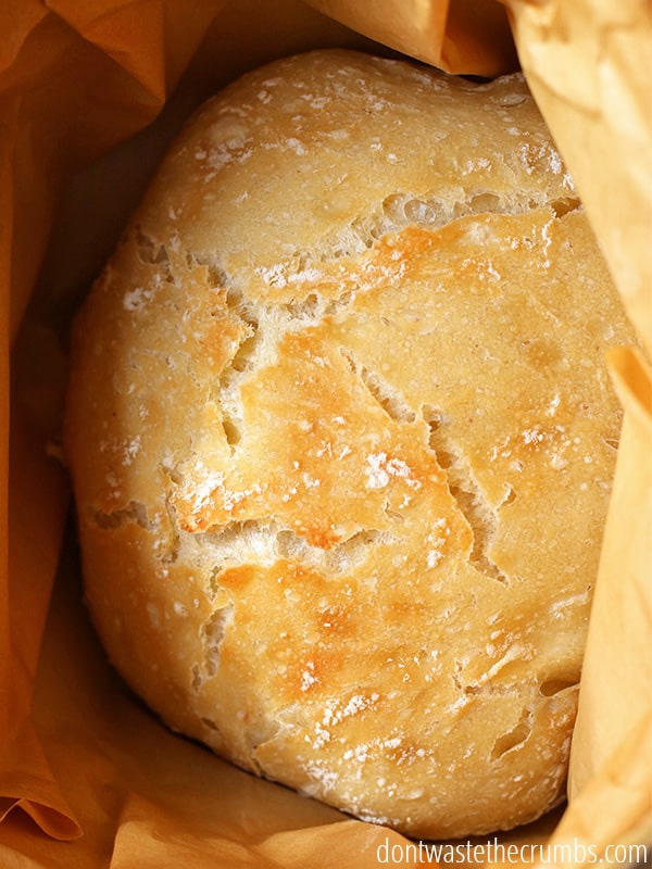 Homemade artisan no knead bread rises overnight and bakes in a dutch oven. Easily adapted into bread bowls!