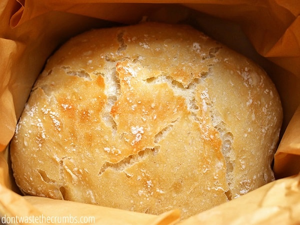 Do you make homemade bread? This is the perfect loaf to start with! So easy, no kneading, and simple ingredients!
