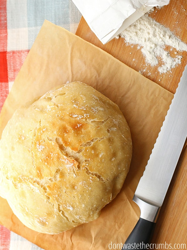 My family loves this classic recipe for no knead bread - they devour it every time I make it! It's so easy too, no kneading involved, rises overnight and costs just 69¢ per loaf! :: DontWastetheCrumbs.com