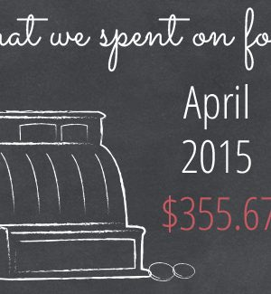 What We Spend on Food – April 2015