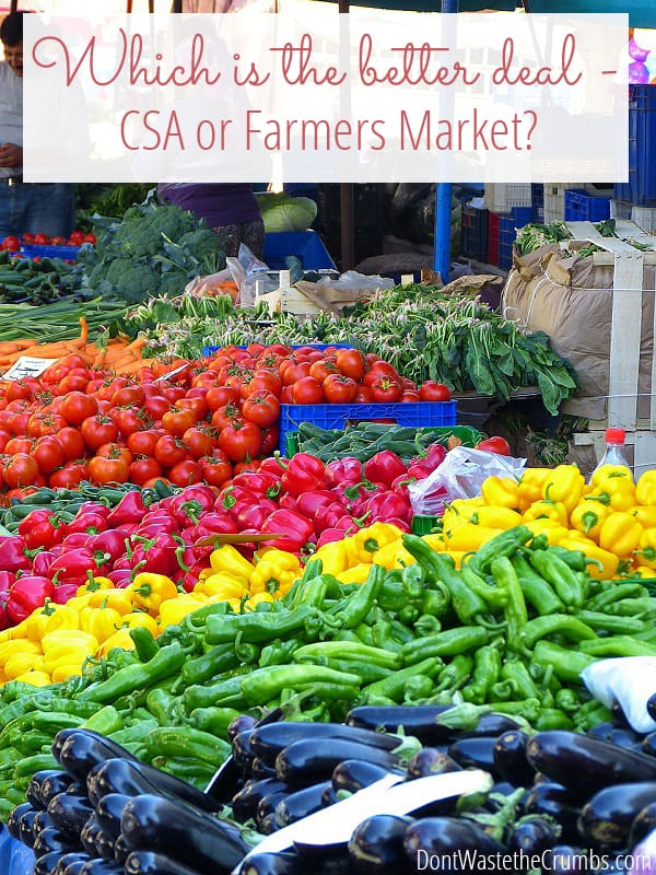 Save money with a csa box instead of a farmers market! Have you ever wondered if a CSA a the farmers market is the better deal for fresh fruits & vegetables? Get a cost breakdown of two CSA's versus 2 local farmers markets and see which is more affordable - you might be surprised at the answer! :: DontWastetheCrumbs.com