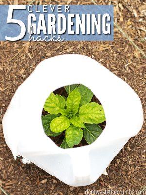5 Clever Gardening Hacks