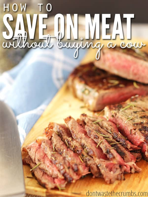 There are many ways to save on meat, and you don't HAVE to buy a whole cow! Here's 7 budget tips for saving money on meat. Practical, simple and straight-forward ideas to help you save money on food! :: DontWastetheCrumbs.com