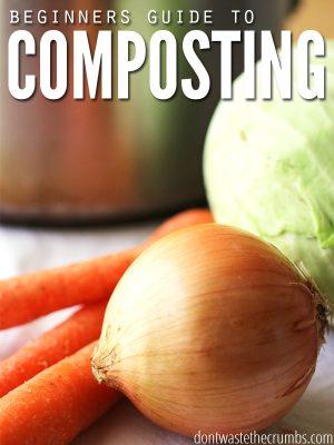 Composting Basics for Beginners