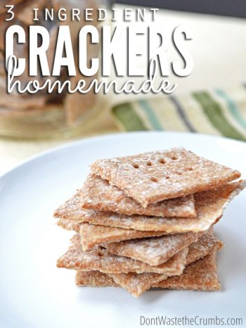 Delicious homemade cracker recipe using just 3 ingredients, plus options to add herbs. A great healthy snack for kids or family ready in just a few minutes. :: DontWastetheCrumbs.com