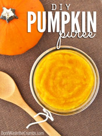 Learn how to make homemade pumpkin puree with this easy & healthy recipe! Use the oven, slow cooker, or instant pot. Perfect in pumpkin recipes & ba:: DontWastetheCrumbs.comby food.