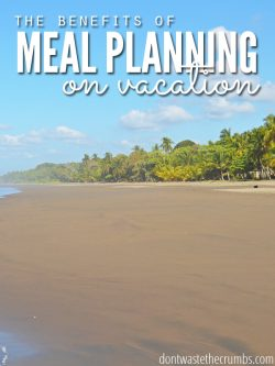 "Beautiful sunny beach with blue sky and text overlay, ""The Benefits of Meal Planning on Vacation""."