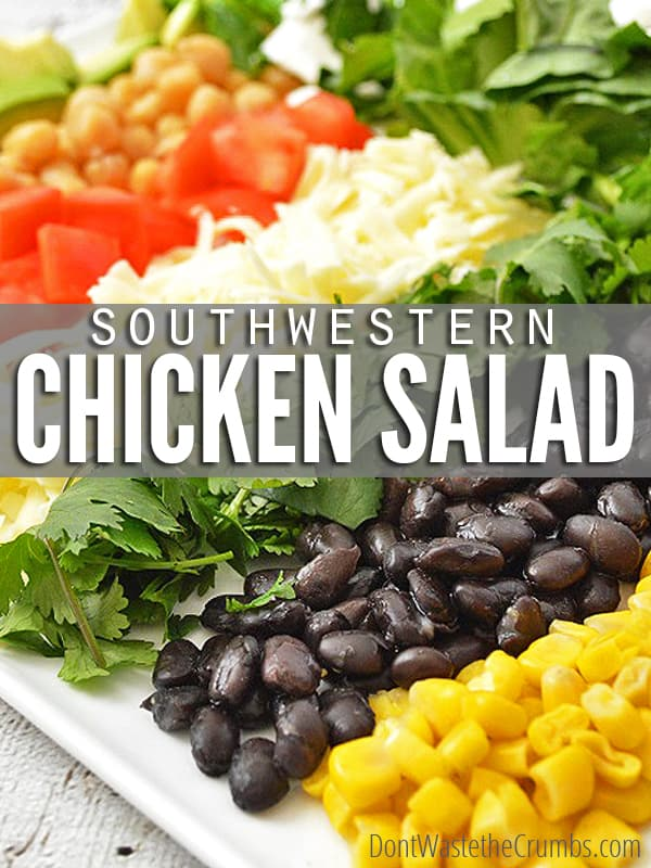 This Southwestern Salad makes a deliciously satisfying real food dinner for a family of four for under $5, with ingredients likely already in your fridge! :: DontWastetheCrumbs.com